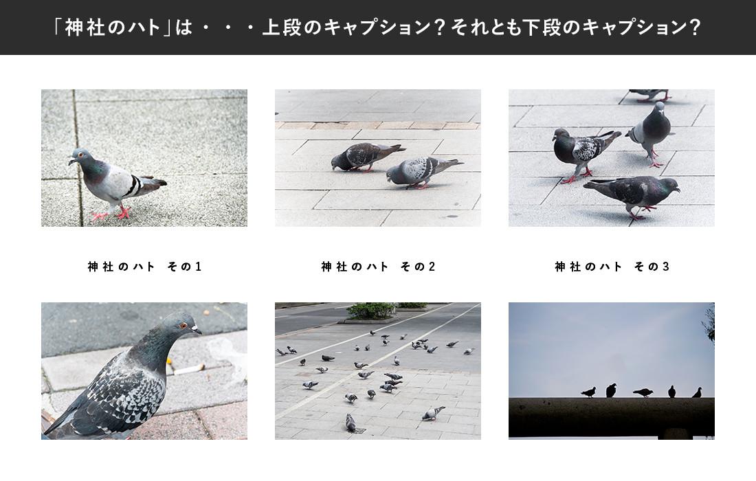 webdesignb12_01_01